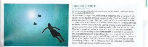 5-10-1-red-turtle
